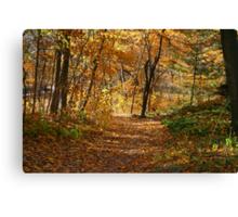 Autumn At Hawthorn Hollow Canvas Print