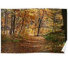 Autumn At Hawthorn Hollow Poster