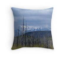 Rebirth (4) Throw Pillow