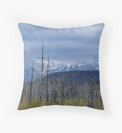 Rebirth (4) Throw Pillow