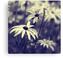 Garden Bokeh Canvas Print