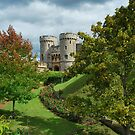 Windsor Castle by Paul Gibbons