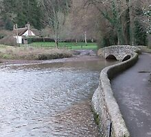 The Packhorse Bridge, Dunster by Ellie Lewis