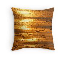 mornings illumination Throw Pillow