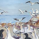 The Gannet Colony at Lambert's Bay by Marie Theron