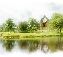Bolton Abbey by Steven  Lee