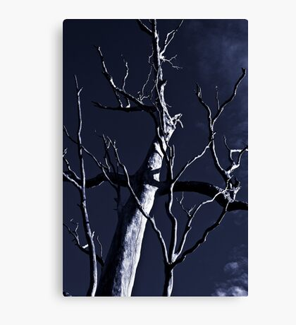 Dead or Alive? Canvas Print