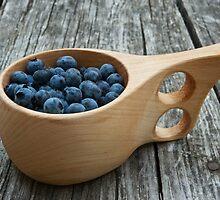 wild blueberries by Skye Hohmann
