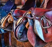 Saddle Up by Karen Peron