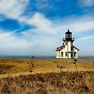 Point Cabrillo Lighthouse Dreamscape by Karen Peron