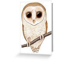Big-Eyed Barn Owl Greeting Card
