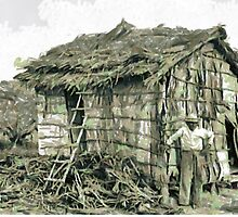 Palm leaf shack occupied by this old man and three of his children, Corozal, Puerto Rico by Dennis Melling