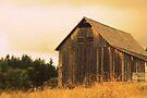 Johnson Farm by Joshua Greiner