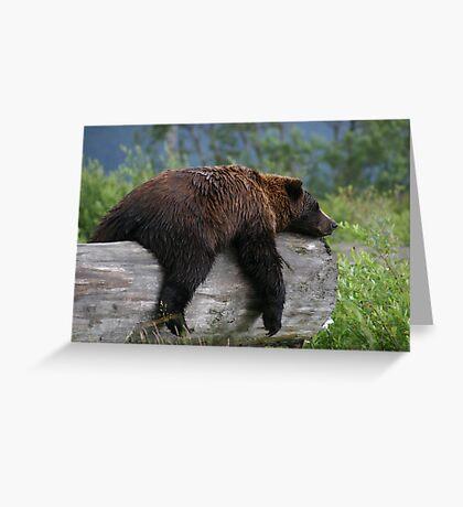 Nap Time Greeting Card
