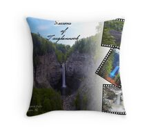 The Four Seasons of Taughannock Falls, NY Throw Pillow