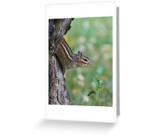 The Softest Chipmunk Ever Greeting Card