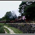 The Welsh Highland Railway by Ian Richardson