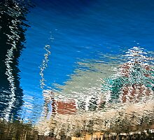 Reflections by Charles Plant