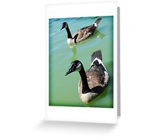DC Geese Greeting Card