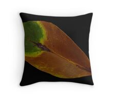 Natures Colours Throw Pillow