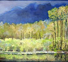 Spring Reflections of Everglades by Teresa Dominici
