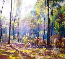 Mist Among the Ironbarks by Lynda Robinson
