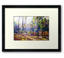 Mist Among the Ironbarks Framed Print
