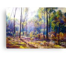 Mist Among the Ironbarks Canvas Print