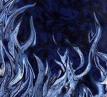 Elemental by Belinda Osgood