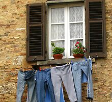 Tuscany - Blue jeans out to dry by Maureen Keogh