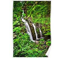Road to Hana Waterfalls Poster