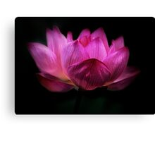 Flower of Light Canvas Print