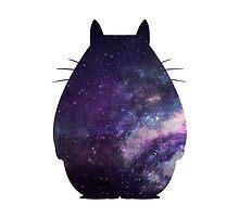 Totoro by KaylaPhan