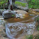River Art.2 by Donovan wilson