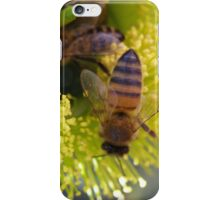 Foraging Bees in Red Capped Gum (illyarrie) Native 'Arilka'.  iPhone Case/Skin