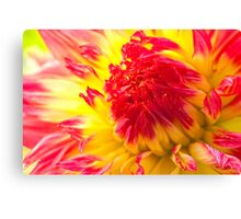 The Yellow Shines Within Canvas Print