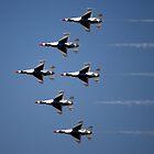 Thunderbirds Air Show by Sandy Woolard