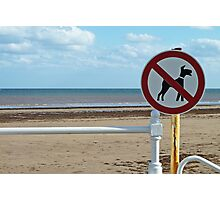 No Dogs Please Photographic Print