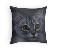 Ziggy the kitten portrait Throw Pillow
