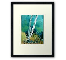 Silver treasure Framed Print