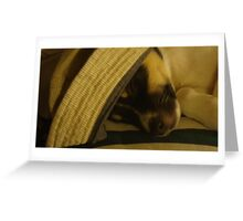 Ben sleeping in a hat Greeting Card