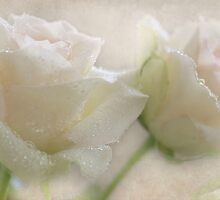 Sparkling Roses by AnnieSnel