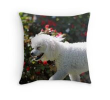 Poodle on a stroll Throw Pillow