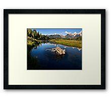 Schwabacher Landing - Grand Tetons National Park, Wyoming Framed Print