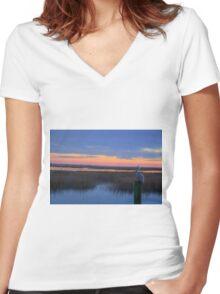 Pelican Sunset Women's Fitted V-Neck T-Shirt