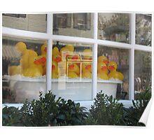 Rubber Ducks-Washington Street Square-Cape May Poster