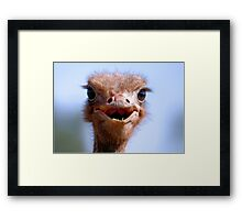 THE OSTRICH - Struthio camelus,  AND.... *What did I have for breakfast.....or lunch? Framed Print