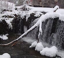 a snowy day at the waterfall by Peggy Burch