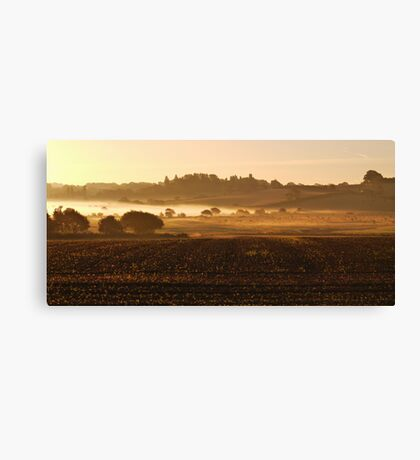 Misty Marsh End Canvas Print