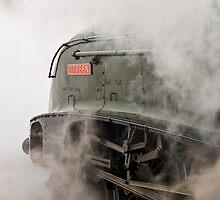 LNER A4 Class 4-6-2  60019 Bittern by Steve  Liptrot